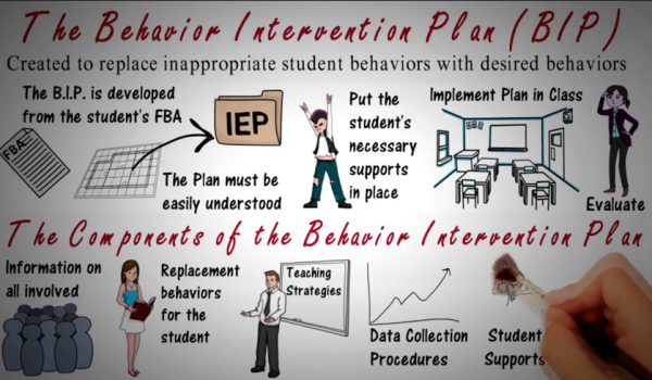 The Components of the Behavior Intervention Plan